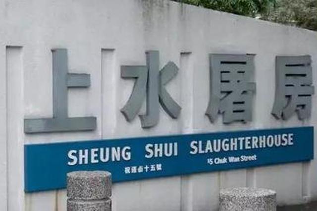 香港上水屠房已销毁4100只猪 预料清洁消毒工作需时3天