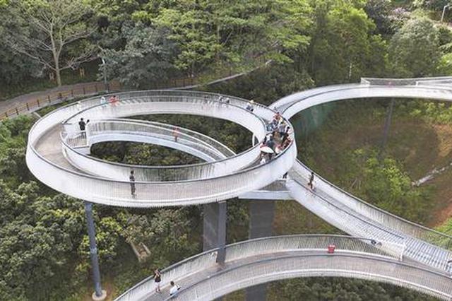 """总投资300亿元 光明小镇浮桥探桥""""初体验"""""""