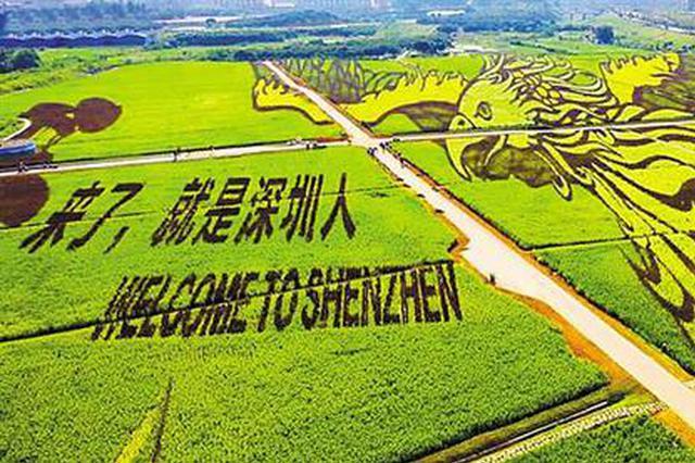 """光明小镇·欢乐田园国庆开放 """"大尺度""""农业景观等你来看"""