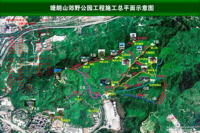 """深圳踏春胜地""""上新"""" 塘朗山郊野公园即将建成"""