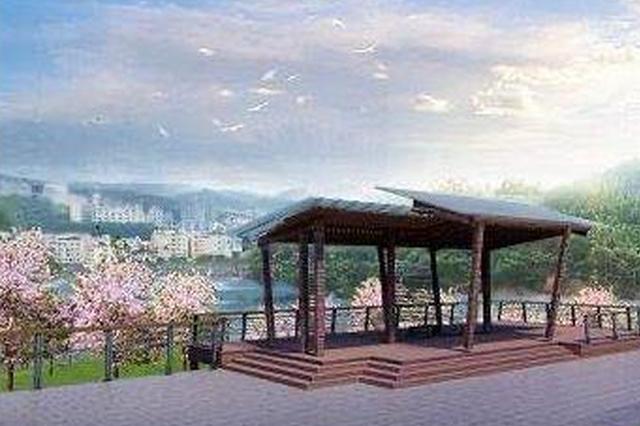 又一个网红打卡点要来了 平湖生态园将变身紫荆花海