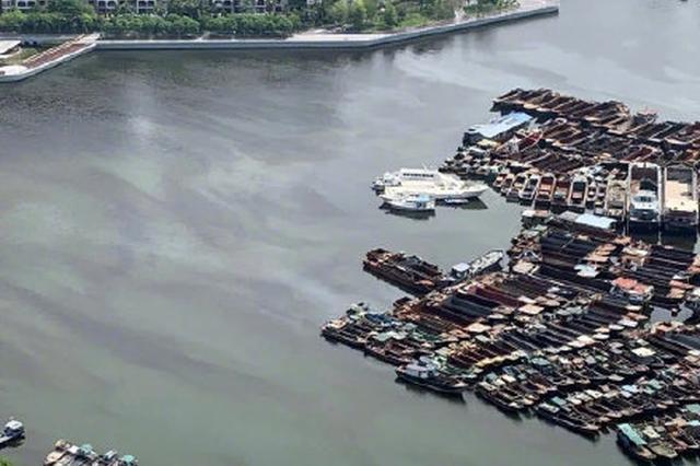 深圳湾赤潮已消退至正常水平 海面无鱼类死亡
