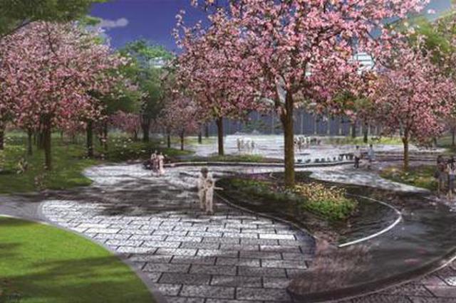 这两大公园正加紧建设 八月来前海可赏紫荆观红树林