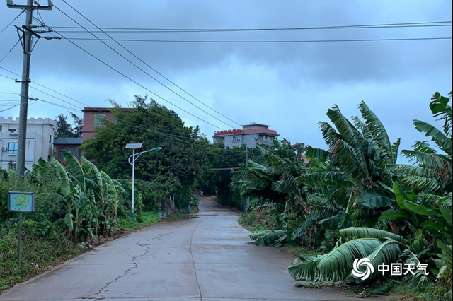 8月伊始2个台风接连生成