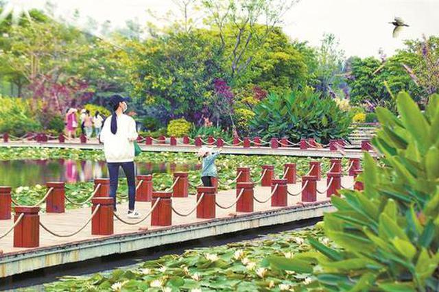 宝安全区已建成184座公园 公园城市建设宝安有诗也有远方