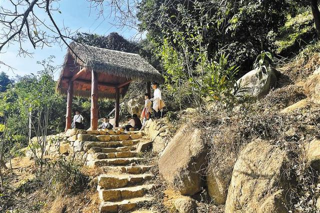 深圳中部郊野径建成开放 跨越南山福田罗湖三区