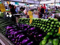 今春菜价比去年同期上涨10.89%