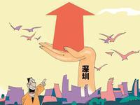 深圳本地股集体雄起
