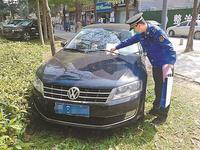 汽车在绿化带违停罚多少