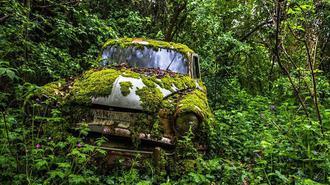 世界各地废弃物悄然融入自然