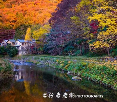 京都琉璃光院:一年仅开放两次