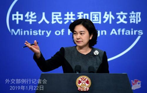 外交部发言人华春莹。图片来源:外交部网站。