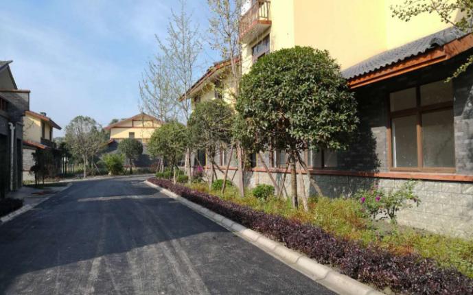 在邮储银行的支持下,彭镇木樨村建成美丽新村。