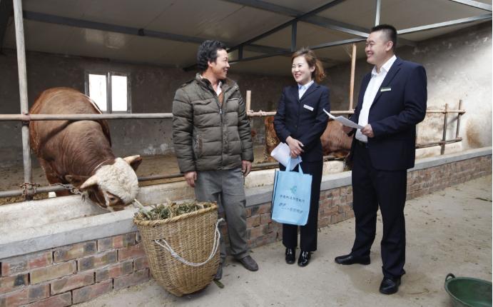 邮储银行信贷员深入蔡川村养殖户家中调研。