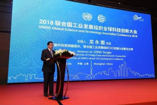 原国家外经贸部副部长、联合国工业发展组织CEO发展大会联合主席龙永图