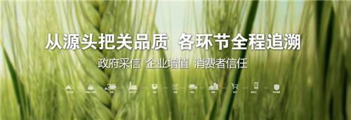 """利川市电子商务公共服务中心惊艳亮相,三百多位""""利川人""""代表为""""凉城良品""""代言"""