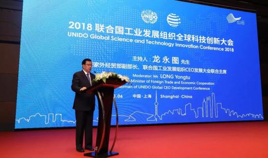联合国工业发展组织CEO发展大会联合主席 龙永图