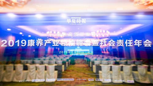 """大象保险荣获华夏时报2019康养产业领袖峰会社会责任年会""""年度创新公益项目""""奖项"""