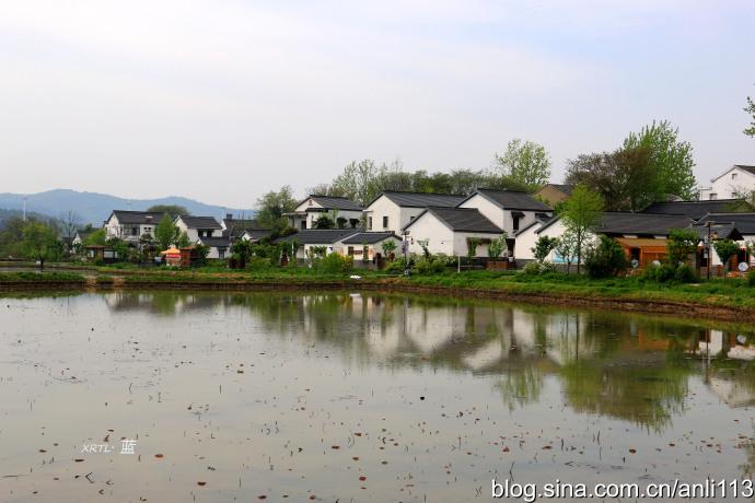 【南京】错峰一日游,美丽乡村秣陵观音殿