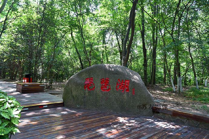 金陵影像:南京钟山风景区内的琵琶湖
