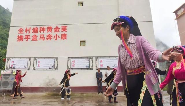 """破局农产品滞销困境,盒马村是中国农业的""""造风者"""""""