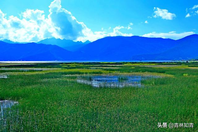 旅游记忆:神游在纳帕海的依拉草原上