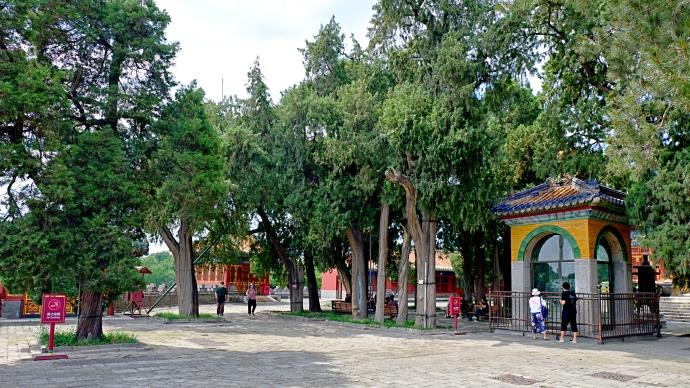 【北京北海公园】团城-北海公园。遛弯儿随拍。2020年7月19日。