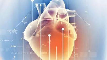 腕管综合征患者的心脏淀粉样改变