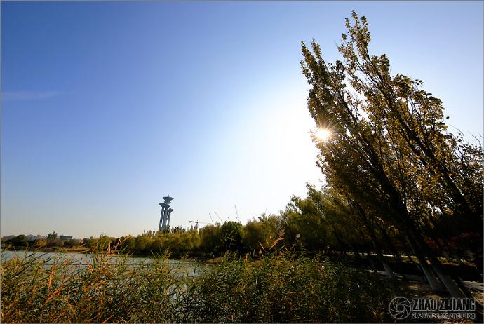 北京奥林匹克森林公园的唯美金秋