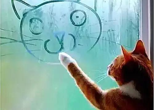 深冬车窗玻璃除雾应该开暖风还是冷风?