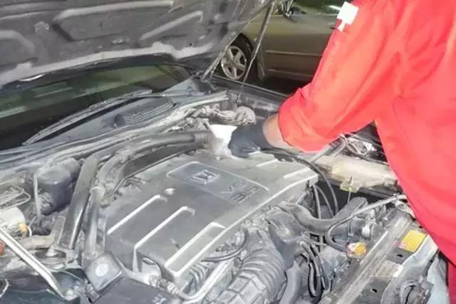 发动机有老鼠光顾?不用怕,专业技师教你如何防治