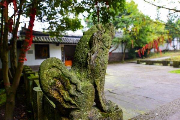 广安还有这样的地方 迷路发现的美景