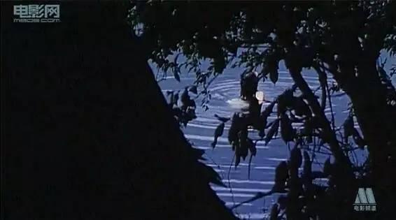 天降毒娃,亲谁谁死,这部国产恐怖片早该进军戛纳