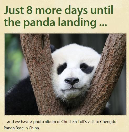 大熊猫梦梦娇庆顺利抵达德国 柏林沸腾了