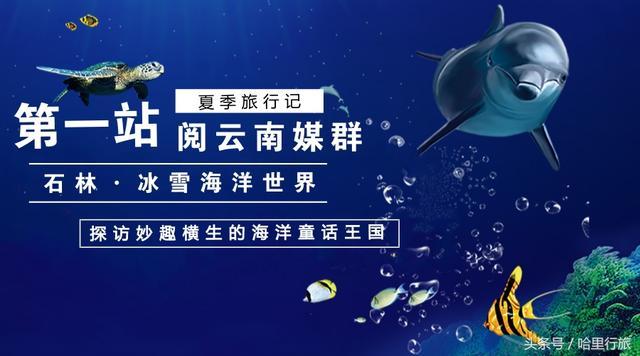 阅云南夏日旅行记第一站:石林冰雪海洋世界