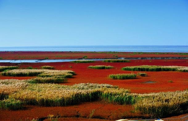 叹红海滩奇观、赏燕塞湖山水、体验游船餐厅特色之旅