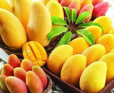 玉溪已经立秋了,接下来,你可以期待这些水果的上市了……