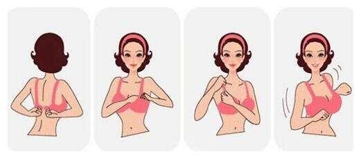 女性bra从A升级到C杯,木瓜是不是起了关键的作用?