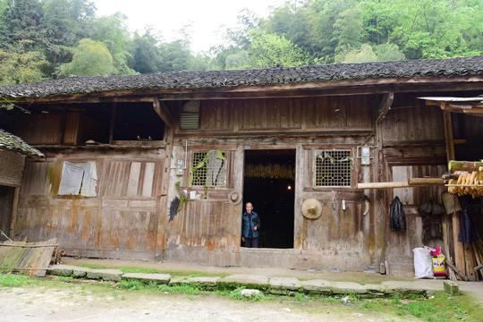 老人破房子藏玄机,3面墙壁为千年金丝楠木!