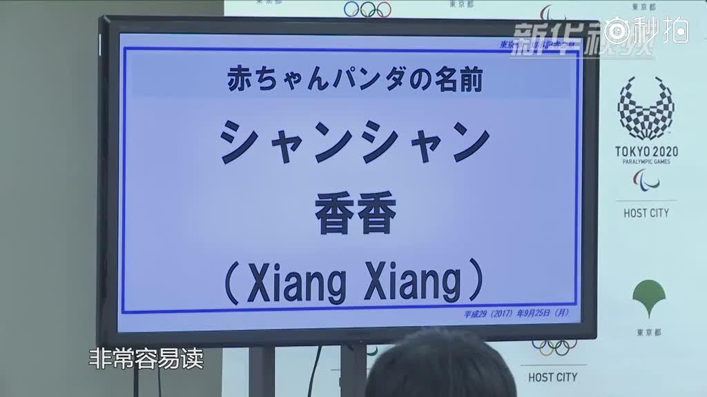 """东京上野动物园熊猫幼仔取名""""香香"""""""