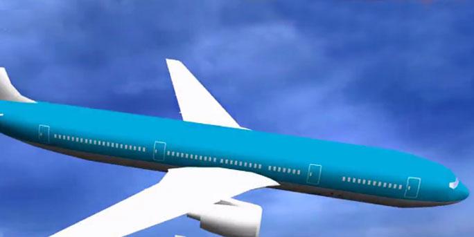 客机机身面板高空脱落 疾速坠下砸中小汽车