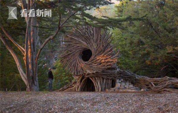 """美国神奇工作""""筑巢人"""" 用树枝搭建巨大""""人巢"""""""
