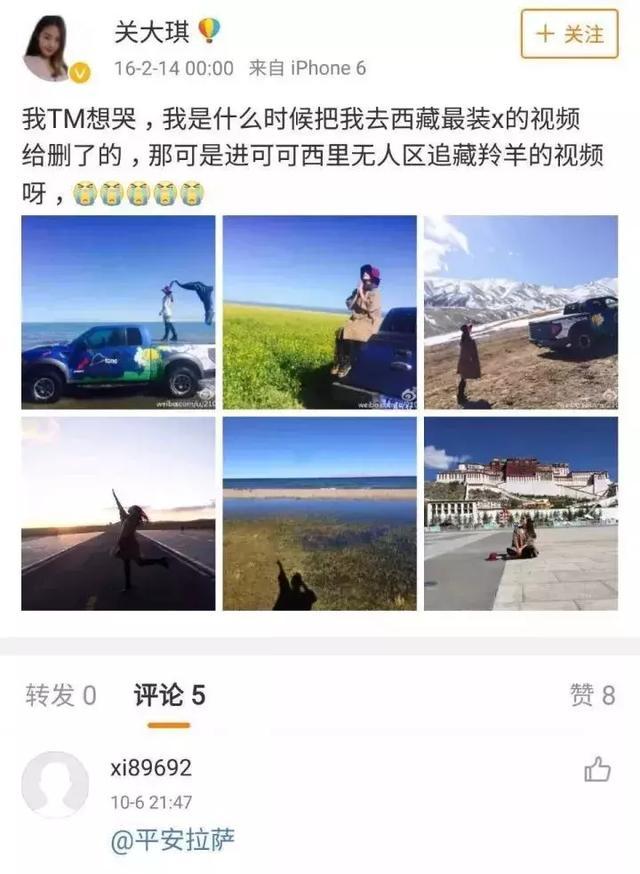 探秘丨为何自驾游车主与藏羚羊拍照竟被罚款10万元?