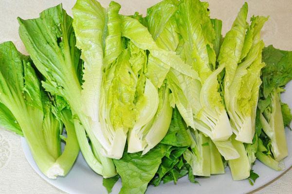 生菜富含维生素a和c,和它一起吃美容减肥!中年瘦身健身操图片