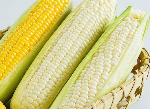 抗癌食物排行榜,它居然排在第一位