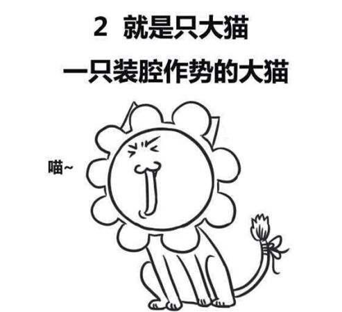 千万不要和狮子座谈恋爱,玻璃心强迫症又很高冷!