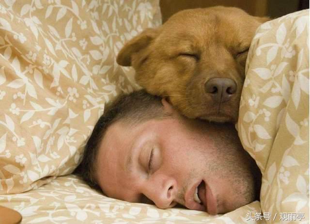 梦见睡觉身体被东西摇晃