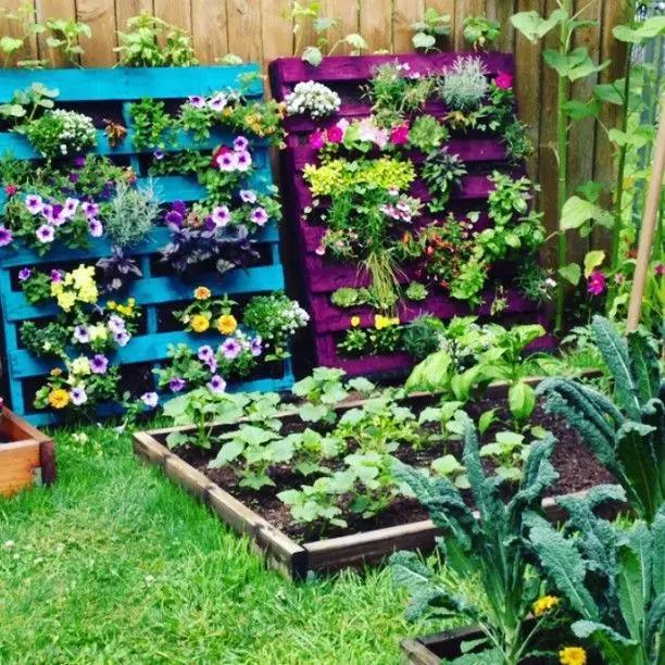 自己家里要是有一个小庭院或者阳台,你不妨试试把它改造成精致小花园图片