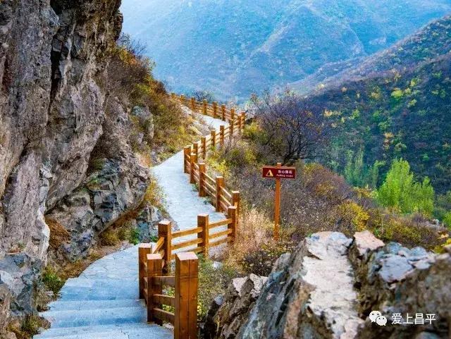 免费!霜降后昌平最美的风景竟然都免费!错过就要等一年