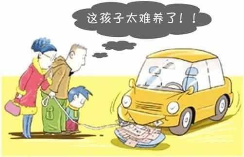 冯提莫收入多少_月收入多少买车